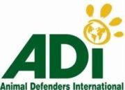 animaldefenders