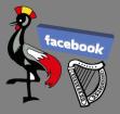 uganda-facebook-ireland-300x284